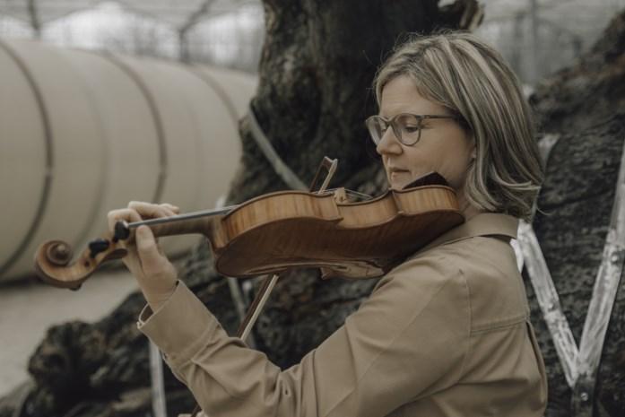 Nieuw orkest voor strijkers in de maak