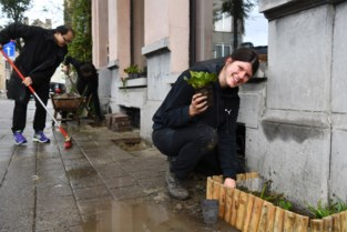 """En wat deed u dit weekend? Deze buren braken samen 3.740 m² stenen uit: """"Drilboor geleend bij de buren"""""""