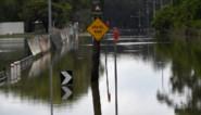 Massale vissterfte verwacht na overstromingen in Australië