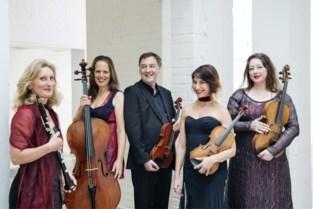 """Cultuursector ligt plat, maar niet voor alle muzikanten: """"Corona heeft veel mensen klassieke muziek leren ontdekken"""""""