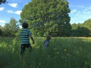 Collectief Moos zet geocachingspel op voor kinderen van alle leeftijden: tocht koppelt natuur aan schattenjacht