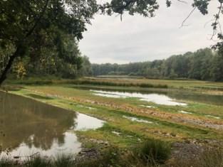 Nieuw Tichelgatpad voert wandelaar langs mysterieus Klokkeven en spookhuis