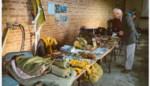 Wandeling herdenkt noodlanding bommenwerper op Speelberg
