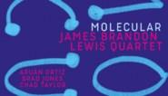 RECENSIE: 'Molecular' van James Brandon Lewis: Akoestisch maar rauw ***