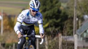"""Specialisten over de kansen van debutant Julian Alaphilippe in de Ronde van Vlaanderen: """"Als één iemand het kan, is hij het wel"""""""