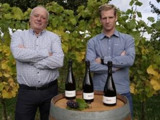 """Pajotse wijnpioniers werken samen en lanceren mousserende wijn uit eigen streek: """"Mensen kopen nu eenmaal graag iets met bubbels"""""""