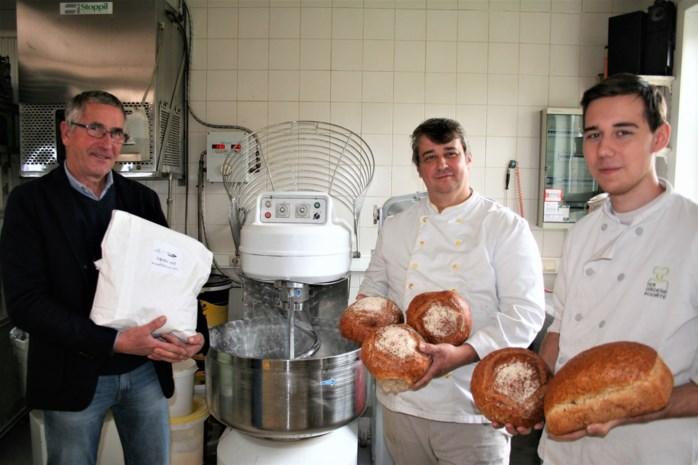 Nieuw bij de warme bakker: brood dat met Oost-Vlaamse bloem is gemaakt
