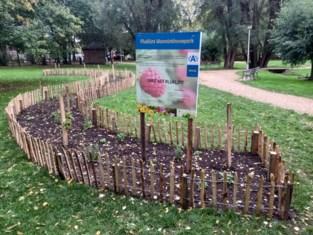 In het voorjaar tulpen voor iedereen in het Wanninckhovepark