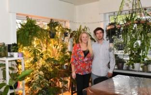 """Postbode en kok starten online plantenshop: """"Planten onderhouden is super ontspannend"""""""