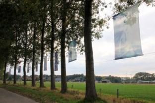 Kunstexpo 'Achter glas' zet corona een hak (en Erika Van Tielen in een wei)