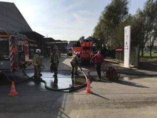 Snelle ingreep van personeel bij felle brand vermijdt inferno in houthandel