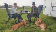 """Restauranthouder biedt Greet en Marc take away aan rand van kreek: """"41ste huwelijksverjaardag om nooit te vergeten"""""""