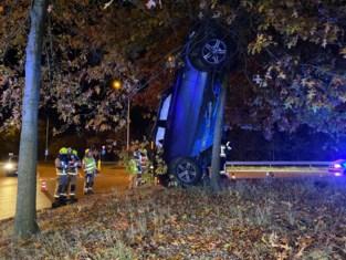 Wagen verticaal geparkeerd tegen boom, bestuurder gewond