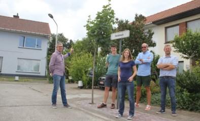 """Buurtbewoners R4 bezorgd over grote werken aan ringweg: """"Rustige leefomgeving geëvolueerd naar een lawaaierige, ongezonde wijk"""""""