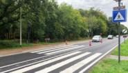 Er komen meer gevleugelde zebrapaden