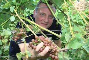 Wijnbouwer Filip (44) vocht eerst tegen vooroordelen nadat hij uit de kast kwam, nu moet hij domein verkopen door corona en hartproblemen