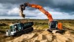 Vlaamse Sahara vergroent en dat is geen goed nieuws: hoe titanenwerk de duinen weer moet laten 'dansen'