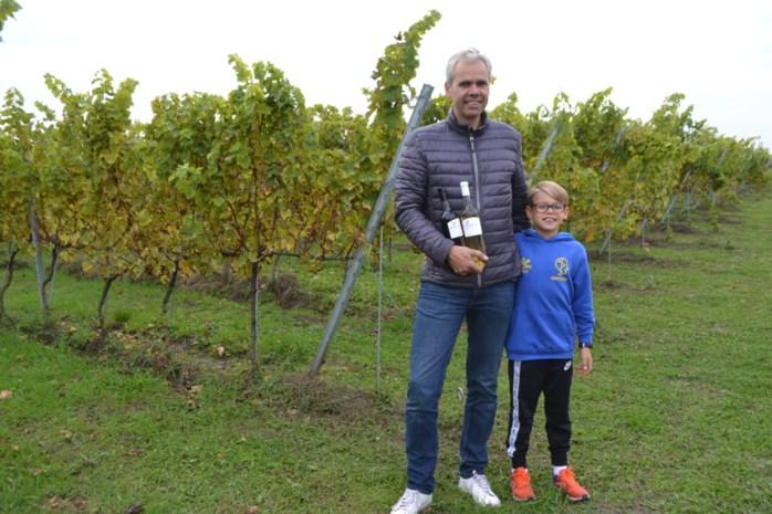 """Ondernemer Tim (47) plukt 6.000 kilo druiven in eigen wijngaard: 'Ik kreeg liefde voor wijn met de papfles ingelepeld"""""""