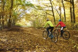"""Districtsschepen droomt van mountainbikeparcours in Antwerpen: """"Ruimte genoeg in de toekomstige Ringparken"""""""