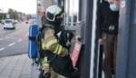 """Brandweer redt hond uit brandend huis: """"Hij was blij me te zien en liep meteen mee"""""""