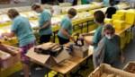 Solidariteit vanuit je kot brengt maar liefst 11.000 euro op: een op de tien inwoners bestelde ontbijtbox