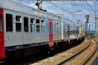 Spoorloper stuurt treinverkeer in de war: treinen 45 minuten stilgelegd<BR />