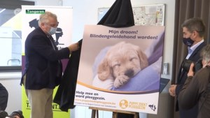 """Prins Laurent op bezoek bij Belgisch Centrum voor Geleidehonden in Tongeren: """"Ik ken Delphine al 20 jaar"""""""