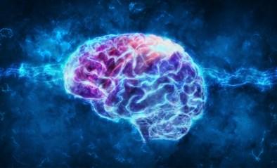 Vrouwen hebben kleiner brein dan mannen