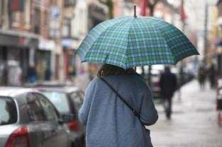 Handelsvereniging koopt 1.000 paraplu's om shoppers droog te houden