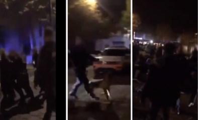 23-jarige stapt naar onderzoeksrechter nadat hij werd gebeten door politiehond in Gent