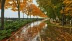 Herfstweer op komst: wisselvallig met kans op buien