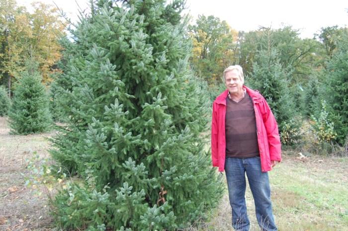 Niet op skivakantie en geen kerstfeest in grote feestzaal? Dan maken mensen het thuis extra gezellig en dat is goed nieuws voor kerstboomkweker Stany (67)
