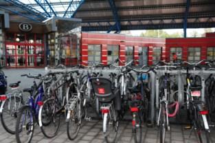 N-VA wil lokfietsen inzetten om fietsdieven te ontmaskeren