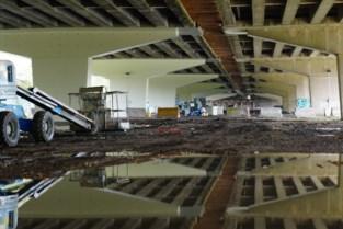 Weg met het betongrijs: brokkelviaduct in Gentbrugge krijgt nieuw kleurtje