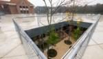 Architecturale top: Provinciaal Onderwijs opent nieuwbouw met zicht op het Rivierenhof