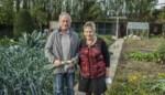 """Eric en Odette mogen weer groenten uit de tuin eten na zware brand: """"Die uit de winkel smaken niet hetzelfde"""""""