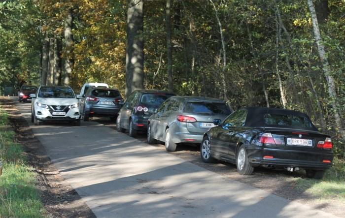 """Landschapspark kreunt onder eigen succes: """"Te veel bezoekers willen tot in het midden van het natuurdomein rijden"""""""