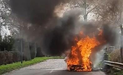 Waardevolle Lotus oldtimer volledig uitgebrand