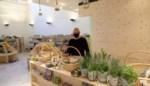 """Bio-Logica is eerste biologische voedingswinkel in het centrum van Brasschaat: """"Zelfs de vernis op de toonbanken is biologisch"""""""