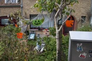 Halloweenrondgang geen goed idee, dan maar tuin vol griezels