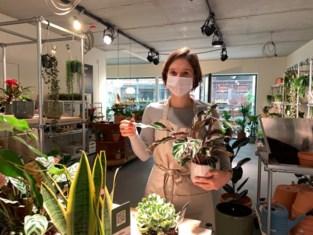 """Bij Pauline (27) koop je plantjes recht van de kwekerij: """"Tuincentrum middenin de stad"""""""