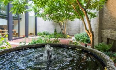 Ontdek de winnende tuinen van Vlaamse tuinaannemer van het jaar