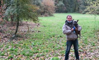 """Petitie voor echte losloopweide: """"Onze honden verdienen meer dan die hamsterweide"""""""