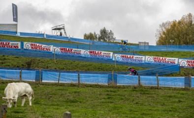 Live vanaf 15u. Wie toont zich de sterkste in de Koppenbergcross?