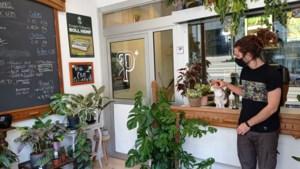 Gentse weedwinkel verkoopt ook andere planten, maar mag toch niet openblijven