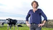 """Landbouwers zijn mentaal uitgeput: """"Het is makkelijker praten over een ziek kalf dan over het eigen welzijn"""""""