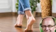 Vloerverwarming en kamerplanten gaan wél samen: onze groenexpert legt uit hoe je dat aanpakt