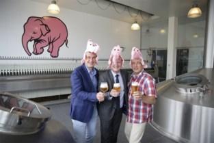 Waarom brouwerij Huyghe toch kan investeren in coronajaar