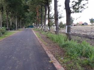 Eiken in de Wolfstraat worden dan toch niet gekapt voor afvoer regenwater