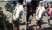 Wielrenner naar ziekenhuis om stekels te verwijderen na pijnlijke val in cactussen